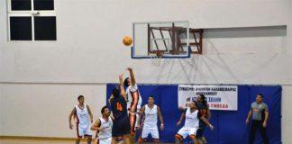 basket montela